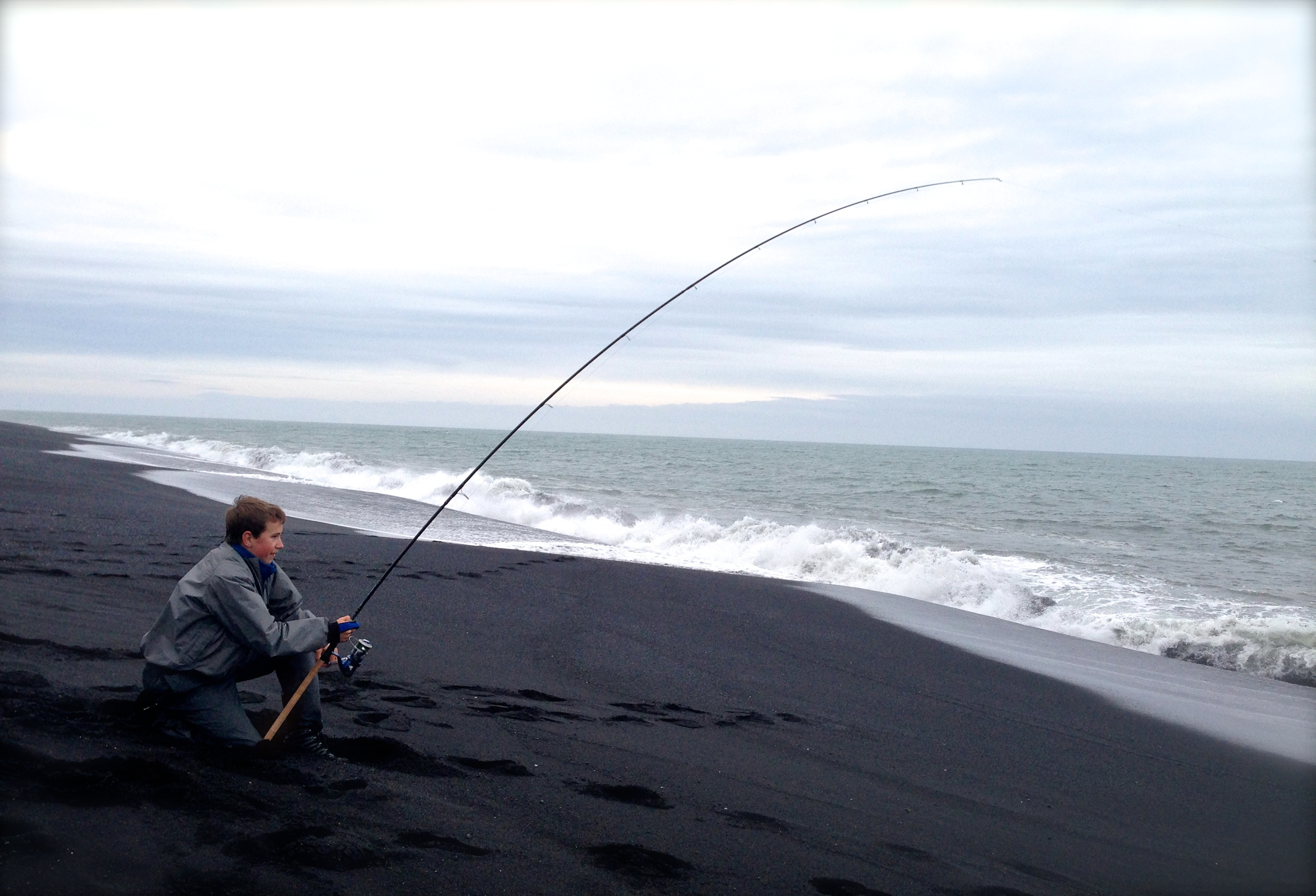 Surf fishing for sharks guide to iceland for Shark rigs for surf fishing