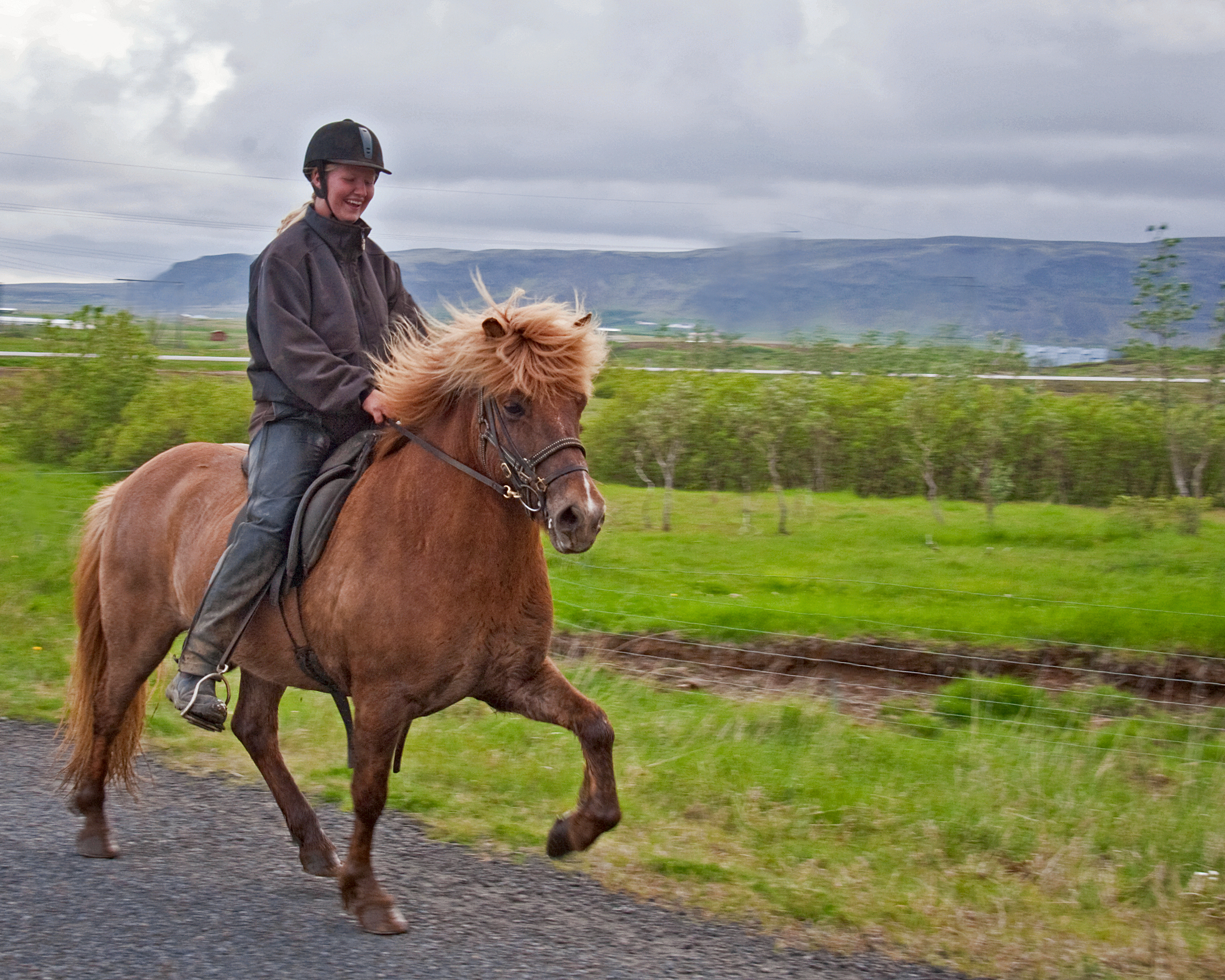 3 Hours Horse Riding | Meadows & Mountains | Guide to Iceland