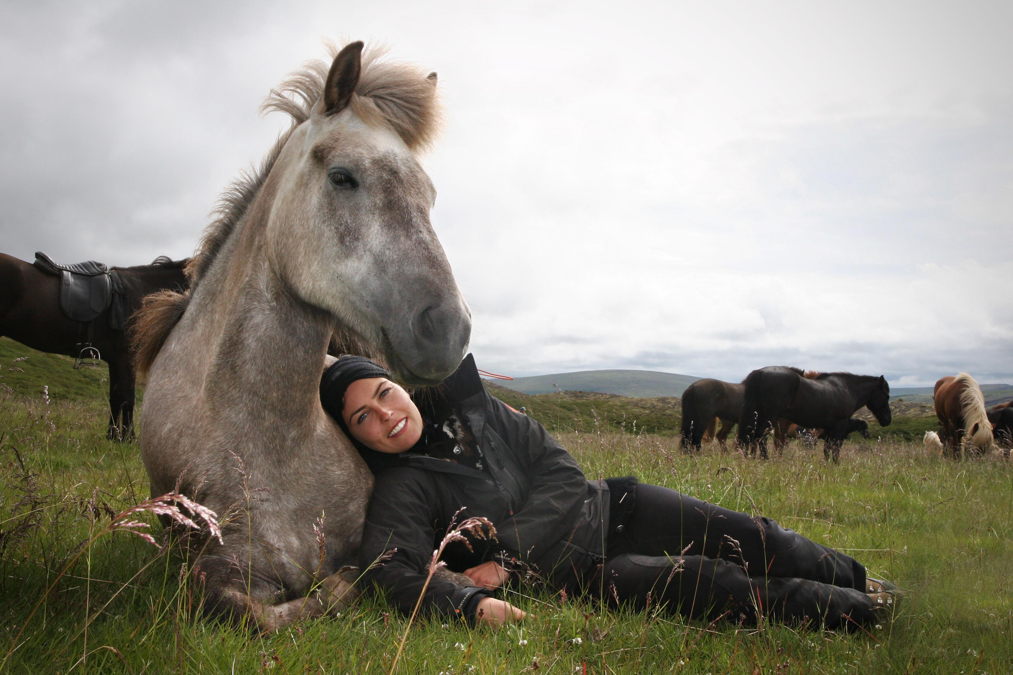 Icelandic Horseback Tours