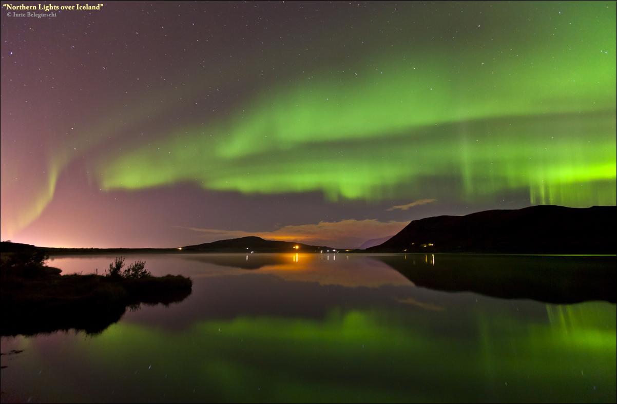 Best Value Northern Lights Bus Tour From Reykjav 237 K Guide