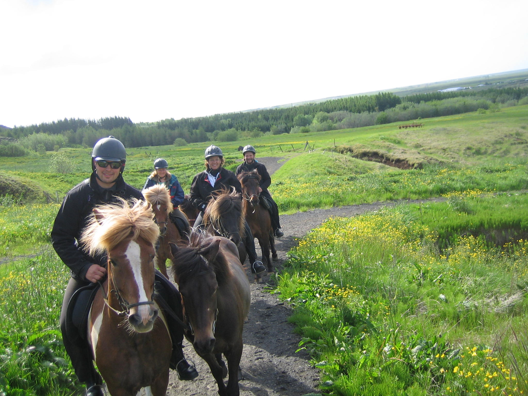 Horseback riding 101 a quick guide for beginner western riders western bridle array horse riding family tour in south iceland guide to iceland rh guidetoiceland is fandeluxe Image collections