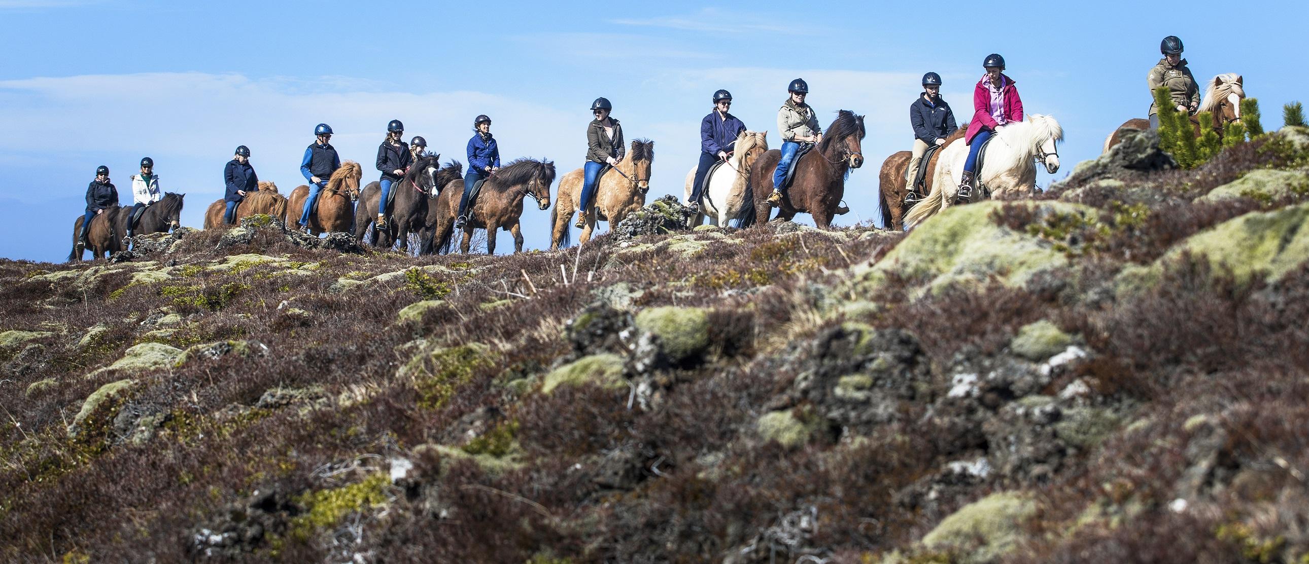 Lava Horseback Riding Tour Iceland
