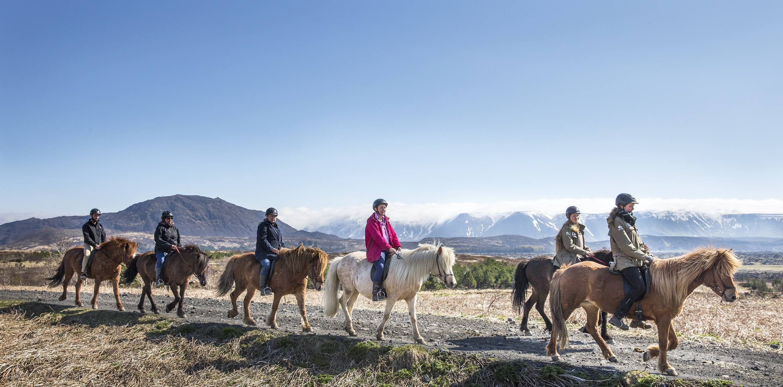 Horseback Riding in the Lava Fields | Guide to Iceland