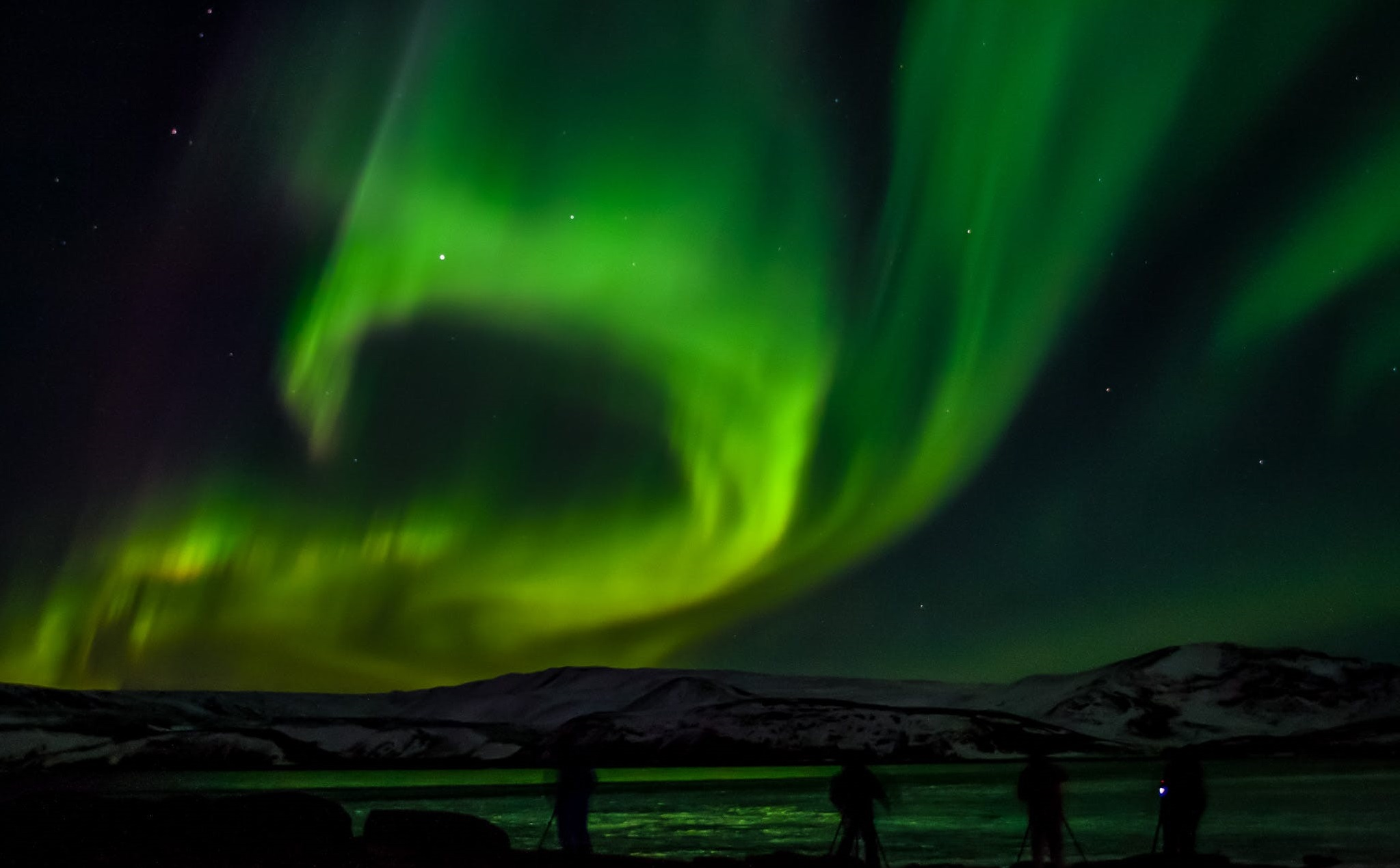 Best Tour Company Iceland Northern Lights