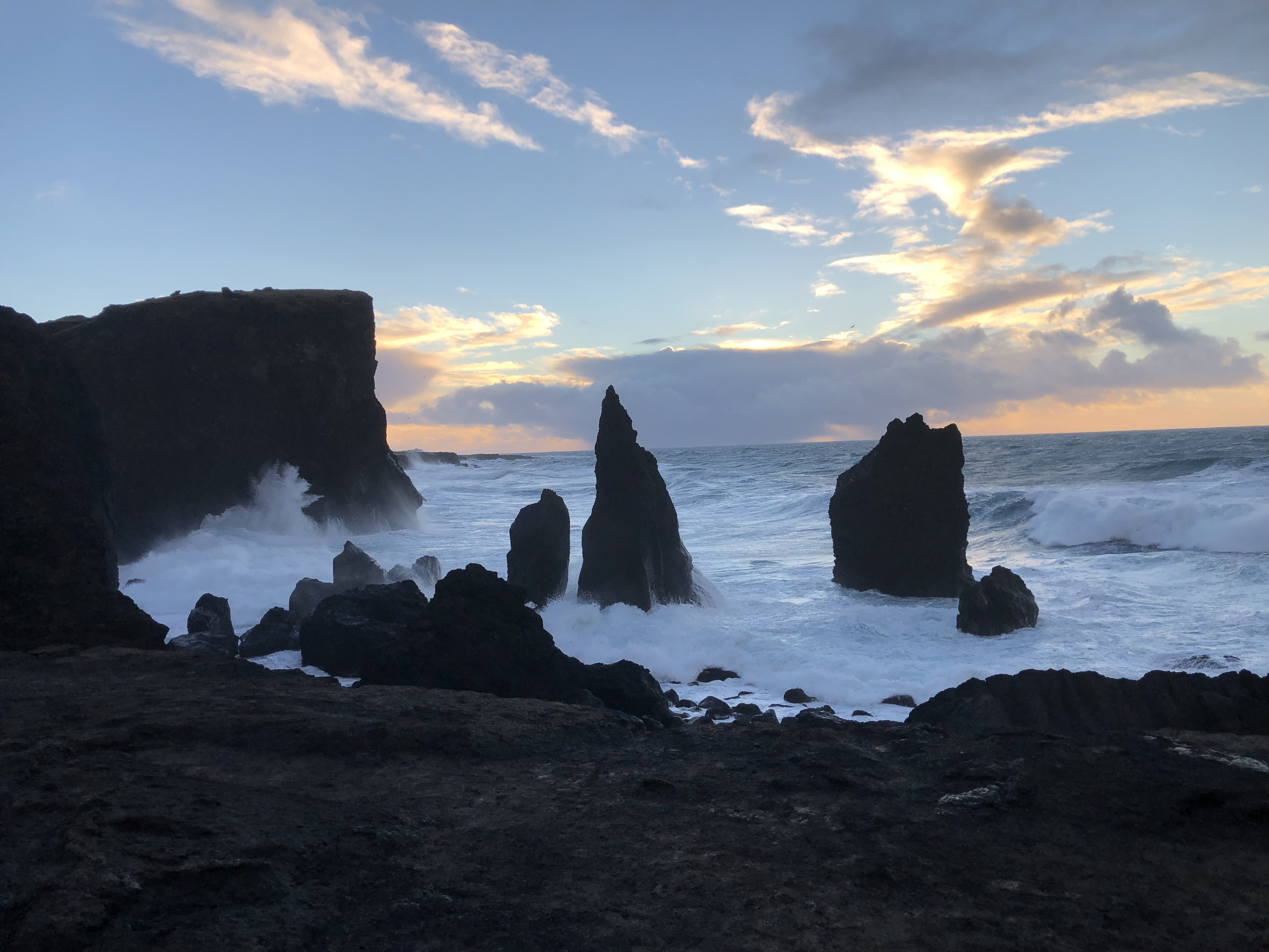 Reykjanes peninsula and the continental rift with a local guide.